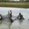 Tamaulipas impulsa la actividad acuícola