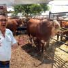 Benefician a ganaderos de Aldama con  programa de Mejoramiento Genético