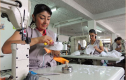 Salario de baja calidad: OCDE
