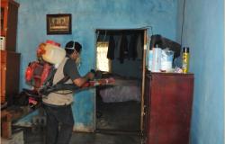 """Intensifica Salud fase de control del dengue por """"Dolly"""""""