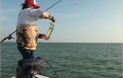 Tamaulipas participará en Campeonato Nacional de Pesca