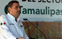 Impulsa Gobierno de Tamaulipas fertilizante orgánico