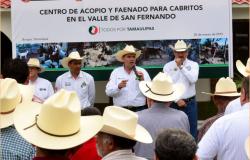 Inauguran centro de acopio y faenado para cabritos en Burgos