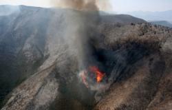 Contrata Tamaulipas a mil 100 personas para reducir incendios forestales