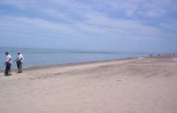 Campaña de limpieza de playa en Isla del Padre