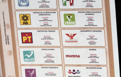 Van 82 millones de boletas producidas para elección de diputados