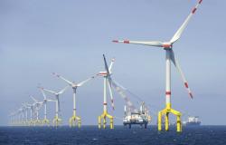 Invertirá Soriana 260 mdp en energía eólica