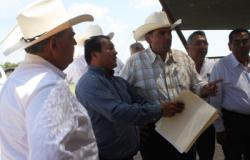 Exporta Tamaulipas ganado con calidad certificada: Solís Gómez