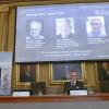Investigadores de reparación del ADN ganan Nobel de Química
