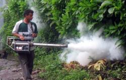 Aumentan casos de zika
