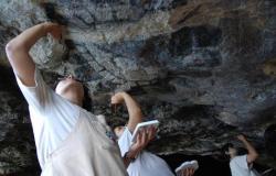 Pinturas rupestres de Oxtotitlán llegan al metro La Raza