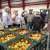 Apoyará Estado al Banco de alimentos de Caritas