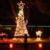 Iluminan zoo en Brownsville