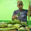 Con planta procesadora de sábila, Gobierno impulsa los Agronegocios