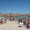 Playas de Tamaulipas son limpias y aptas para el turismo, afirma Salud