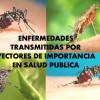 Despliega Salud acciones preventivas por lluvias en Tamaulipas