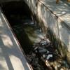 Urgente ya no tirar basura a vía pública, daña drenajes