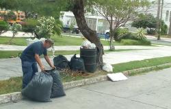 Recomienda Municipio sacar contenedores el día programado para la recolección