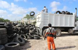 Combate Gobierno de Tamaulipas contaminación con destrucción de más de 21 mil llantas