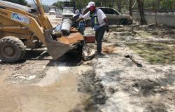 Continúan acciones de limpieza tras inundación en Reynosa.