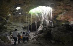 Tamaulipas se consolida como destino turístico vacacional.