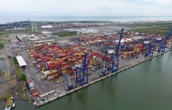 Tamaulipas dará apoyo a productos tamaulipecos para que logren exportar.