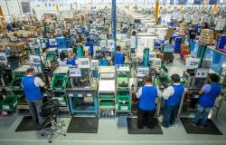 Crece actividad económica en Tamaulipas: INEGI