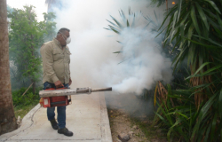Inicia Gobierno de Tamaulipas plan intensivo de combate al dengue.