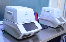 COVID-19 en Tamaulipas Confirma SST 71 nuevos casos.