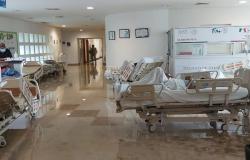 Despliega Gobierno de Tamaulipas acciones de control y vigilancia de enfermedades tras impacto de Hanna.