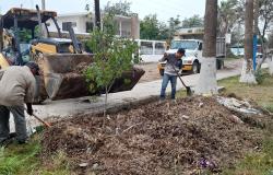 Recupera Ayuntamiento más 24 hectáreas de predios municipales